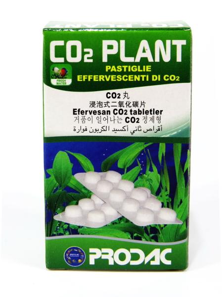 Co2 для растений